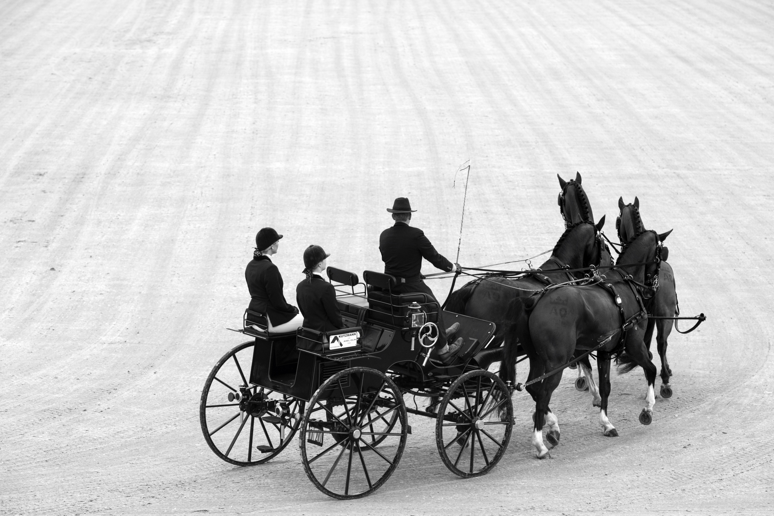 European  Championship Driving Dressage Competition Axel OLIN (SWE) drives his team of 4 horses