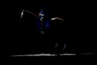 Picture taken for Godolphin.  Godolphin, sponsored by Emirates, is the Maktoum family's private thoroughbred horseracing stable and was named in honour of the Godolphin Arabian, who came from the desert to become one of the tree founding stallions of the modern thoroughbred . Godolphin's headquarters are in Dubai. It operates two racing stables in Newmarket, UK, two in Sydney one in Melbourne, Australia and also has horses in training with independent trainers in Great Britain, Australia , France, Japan, USA and Ireland. UAE Vice President, Prime Minister and Ruler of Dubai, H.H Sheikh Mohammed Bin Rashid Al Maktoum is the driving force behind Godolphin.